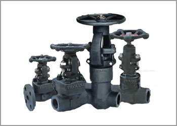 carbon steel 1018 forged valves manufacturer